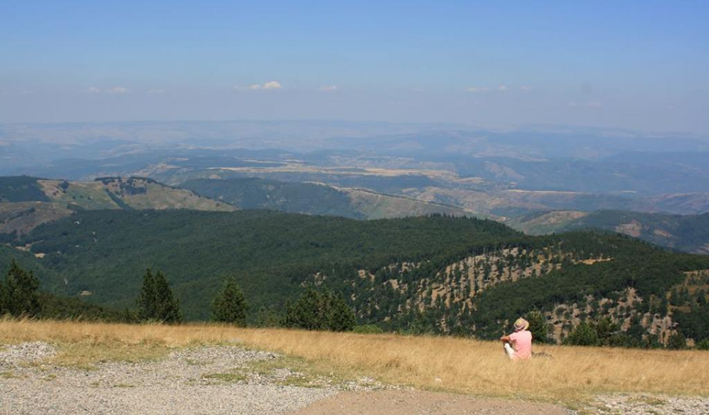 Vu depuis le sommet du Mont-Aigoual (30-48) - FD / LMDP