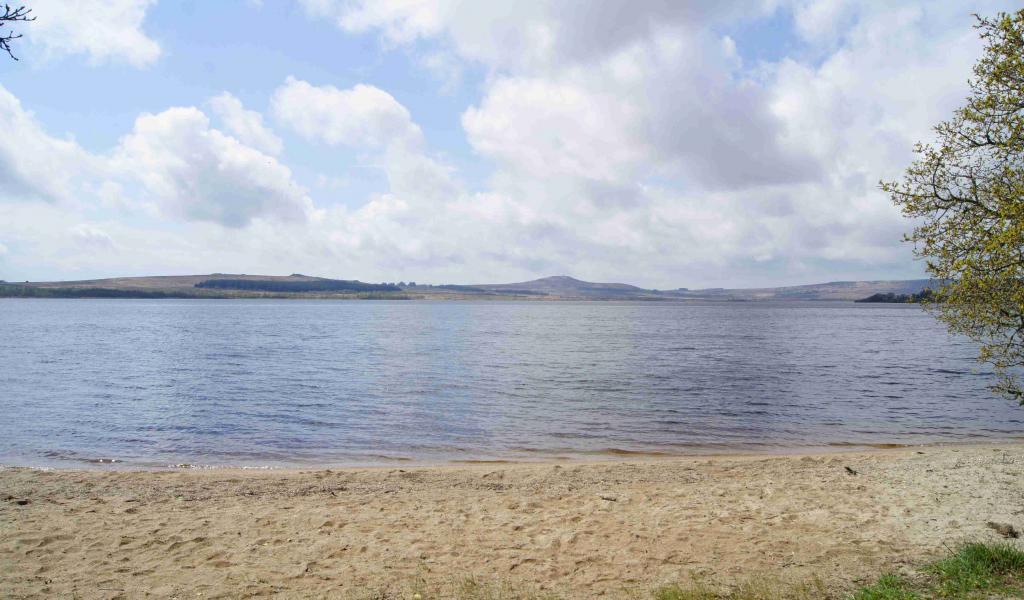Depuis 10 ans, Bretagne Environnement fourni des études pour le grand public et les collectivité sur l'environnement breton - Crédit photo : François Delotte