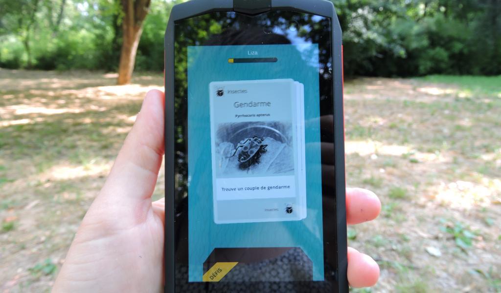 L'appli Biodiv Go sera disponible sur Androïd à partir du vendredi 23 juin 2017. Crédits : Justine Carnec