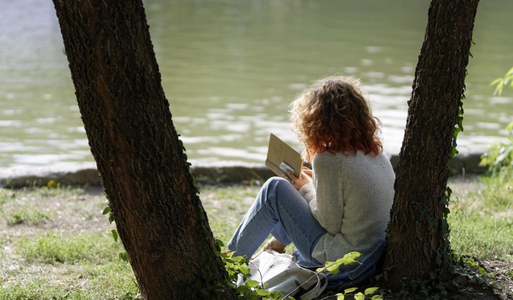 lecture. Crédit pixabay