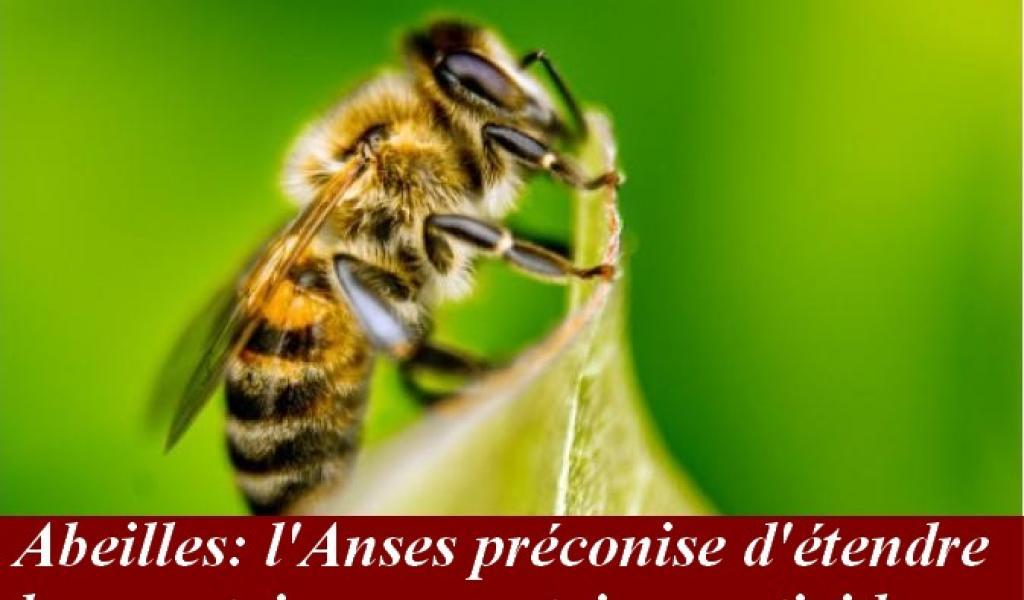 Le Syndicat Apiculteurs Midi-Pyrénées offre une ruche à Mme Batho, M. Chanteguet et M. Bapt !