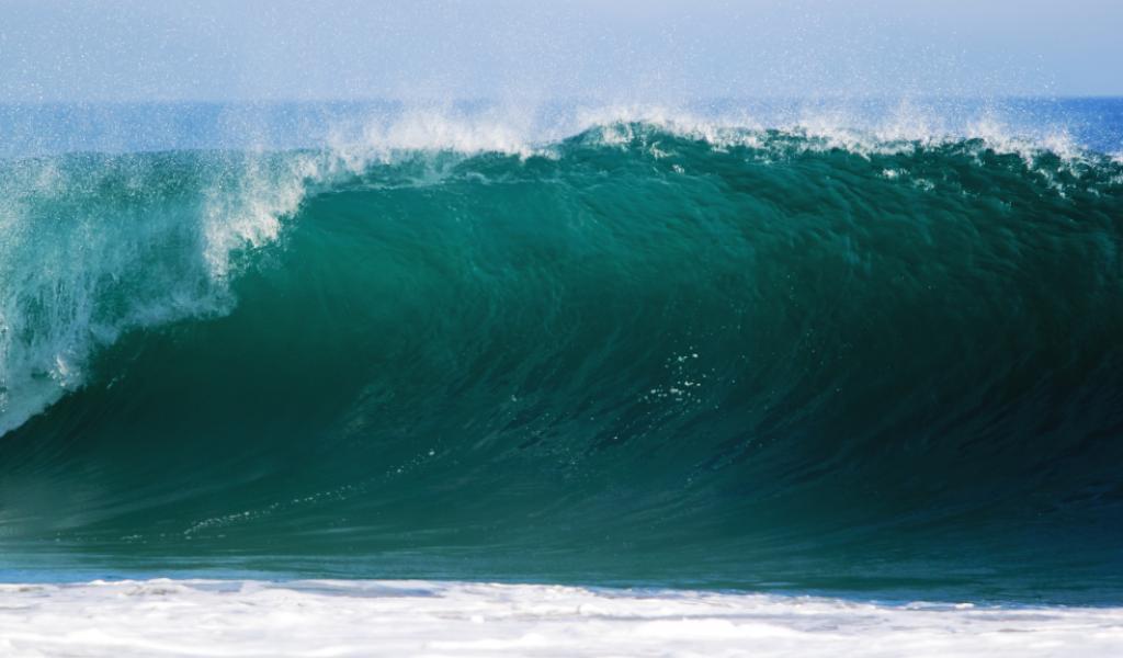 Crédits photos: Pixabay CC0 Public Domain UnsplashAujourd'hui, 8 juin 2016, on fête l'océan à travers le monde. Une occasion pour se rappeler de l'importance des océans dans notre vie quotidienne. WWF appelle ainsi à une réglementation de la pêche à travers le monde pour protéger l'océan.