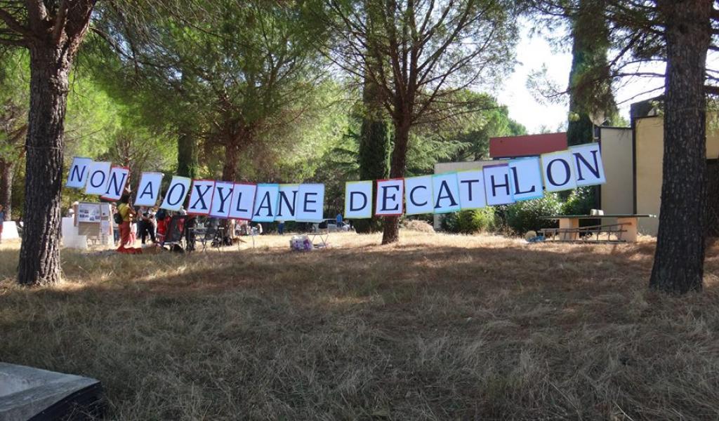 Le collectif Oxygène s'oppose depuis trois ans au projet de centre commercial Oxylane, à Saint-Clément-de-Rivière. - DR